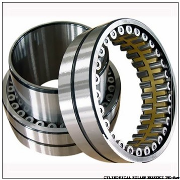 NNU4176MAW33 NNU4192MAW33 CYLINDRICAL ROLLER BEARINGS TWO-Row