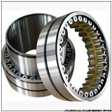 NNU4160MAW33 NNU49/500MAW33 CYLINDRICAL ROLLER BEARINGS TWO-Row