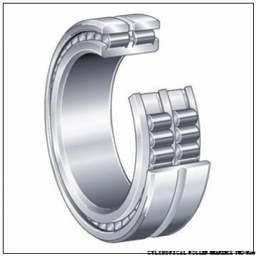 NNU40/530MAW33 NNU49/670MAW33 CYLINDRICAL ROLLER BEARINGS TWO-Row