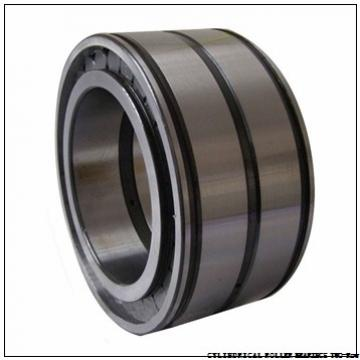 NNU49/710MAW33 NNU4952MAW33 CYLINDRICAL ROLLER BEARINGS TWO-Row