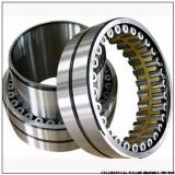 NNU4988MAW33 NNU4188MAW33 CYLINDRICAL ROLLER BEARINGS TWO-Row