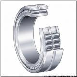 NNU4160MAW33 NNU4076MAW33 CYLINDRICAL ROLLER BEARINGS TWO-Row