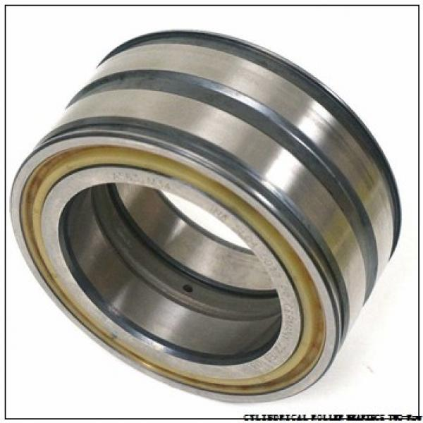 NNU4984MAW33 NNU49/900MAW33 CYLINDRICAL ROLLER BEARINGS TWO-Row #3 image